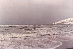 連−抜海海岸1