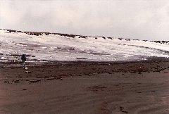 抜海の海岸を離れて歩く青いダウンジャケットの男