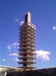 青空の下の駒沢公園の色々